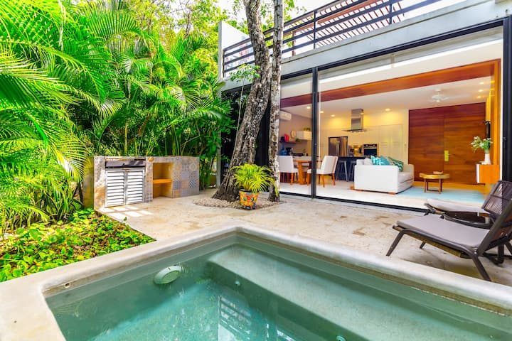 Incredible 2BR , with Private plunge pool! Akumal