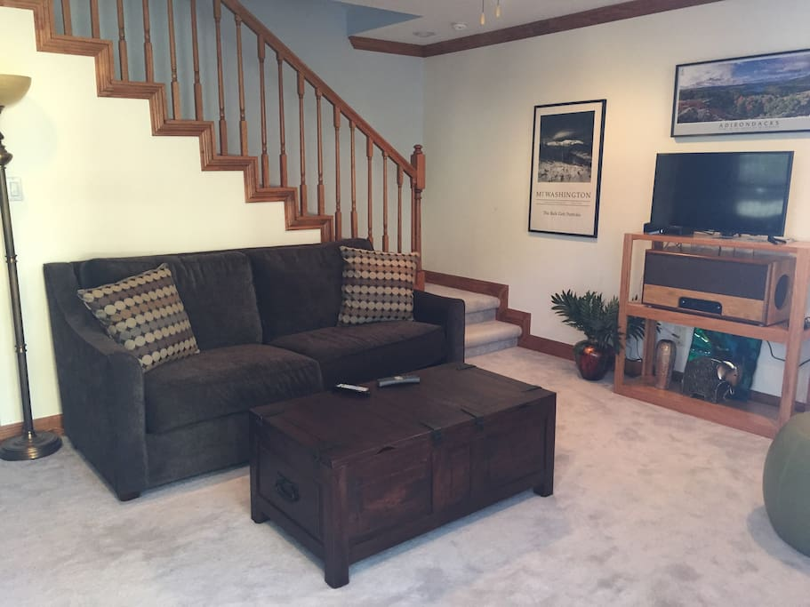 Living Area w/sleeper sofa