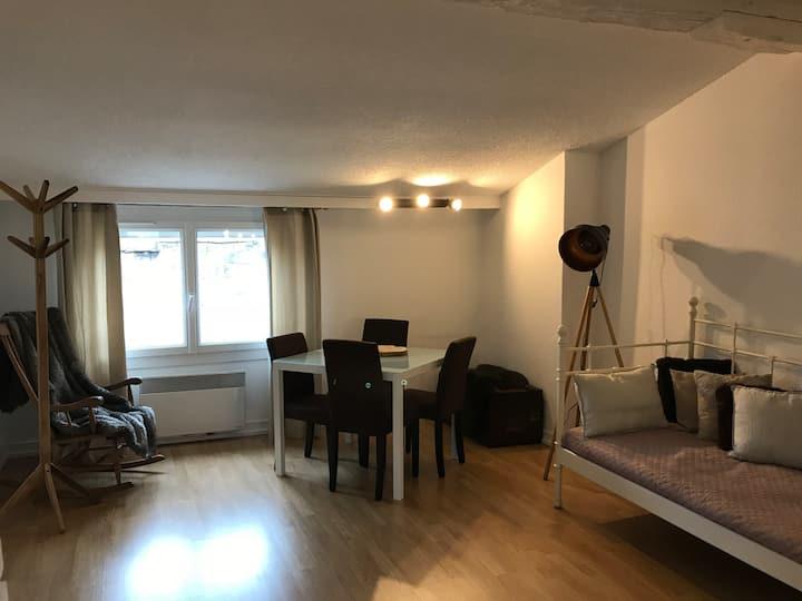 Appartement sous les toits, centre de Bordeaux