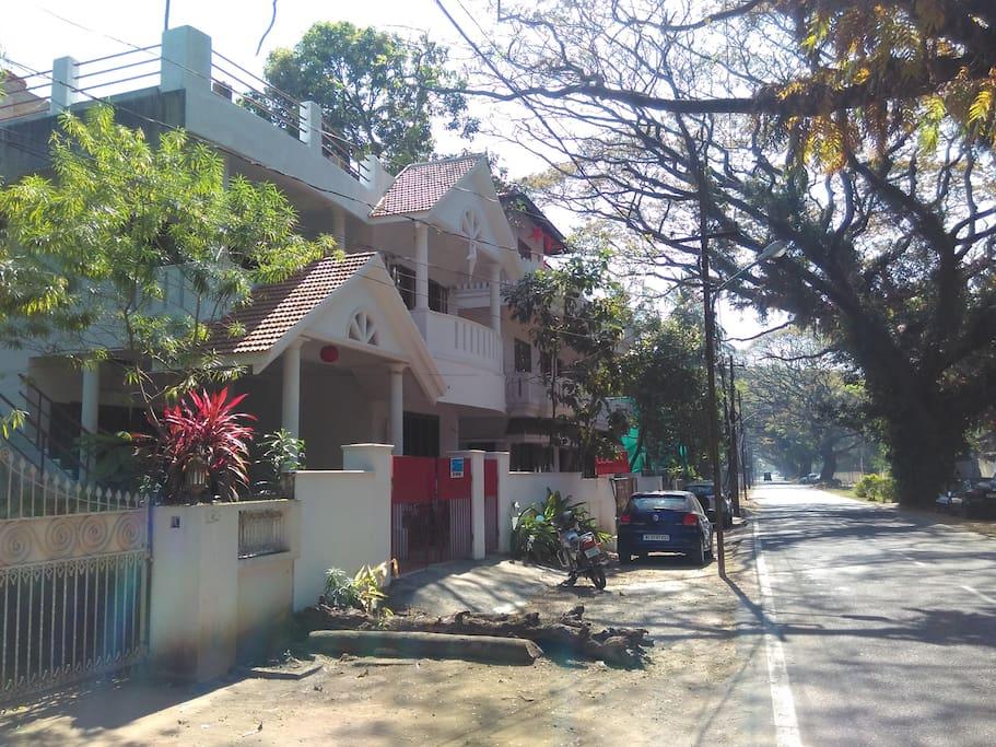 tree lined neighborhood