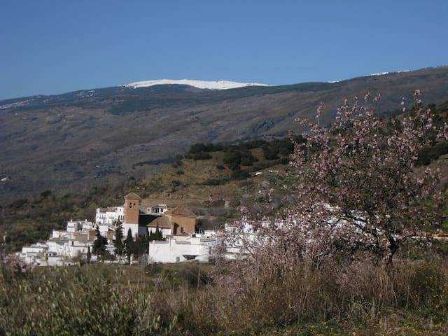 Alpujarra Granada Sierra Nevada - Apartment - Mairena - Appartement