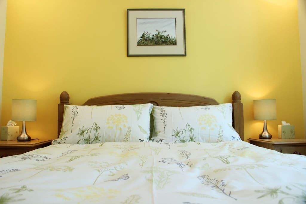 Sumptuous king sized bed with down pillows