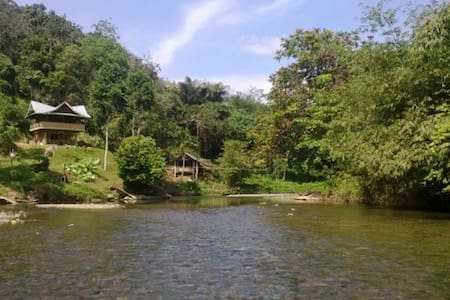 Tranquil Jungle Hut - Bukit Lawang