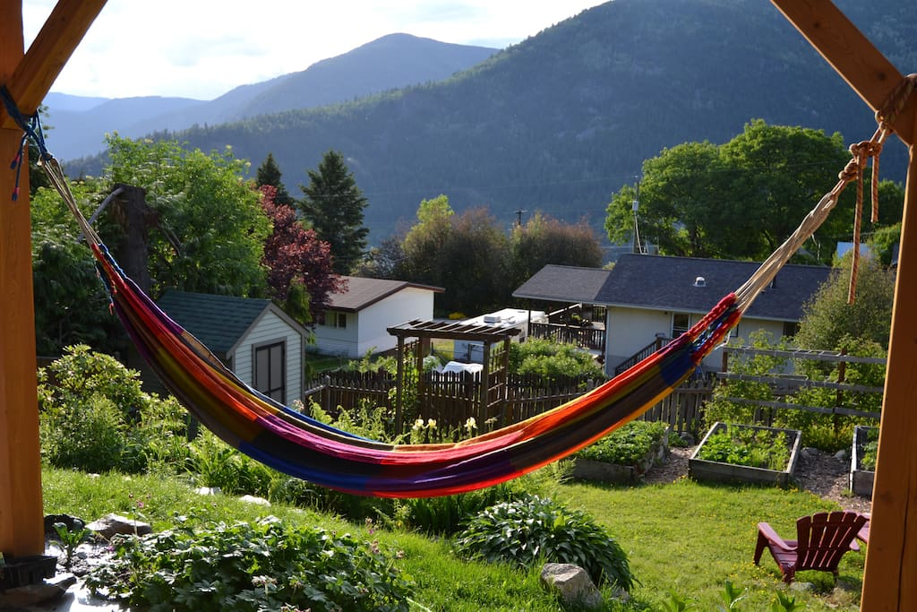 Sunny views from the hammock