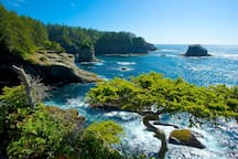 Cape Flattery is the most northwesterly tip of the contiguous 48 states.