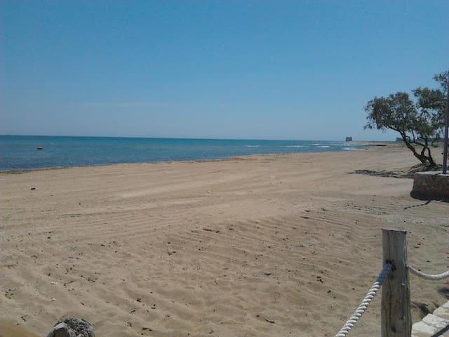 Trilocale a 50 metri dalla spiaggia - Idrovore - Leilighet