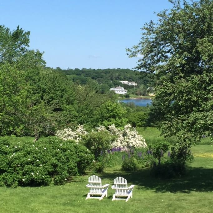 View from rear deck of garden