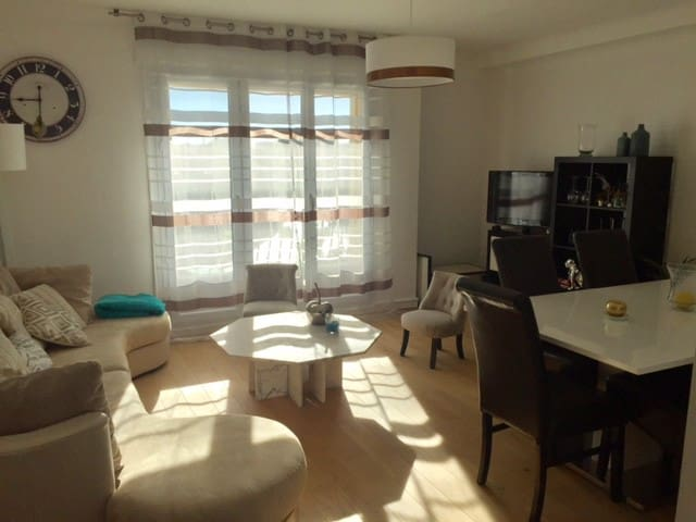 Charmant appartement T3 hyper centre - Laval - Apartemen