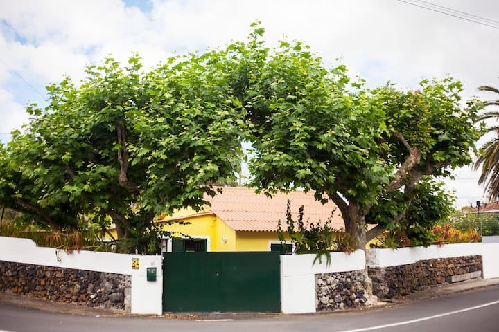Casa Amarela na Praia do Pópulo (150 m da praia)