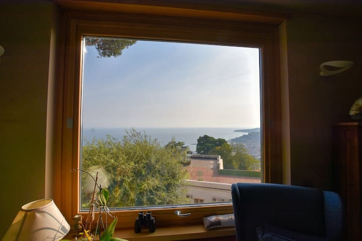 Window with panoramic view