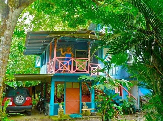 Hidden jungle beach house singles bed breakfasts for for Jungle house costa rica