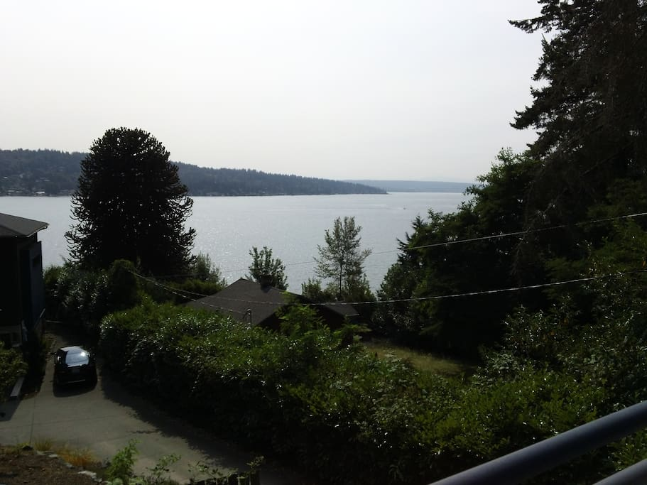 The view of Lake Washington.