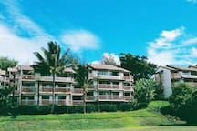 Banyan Harbor condos are top notch for location and set on beautiful grounds that are meticulously maintained!  24 hr security patrol also.