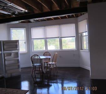 Ann Arbor and area:  U of M  professional - Apartment