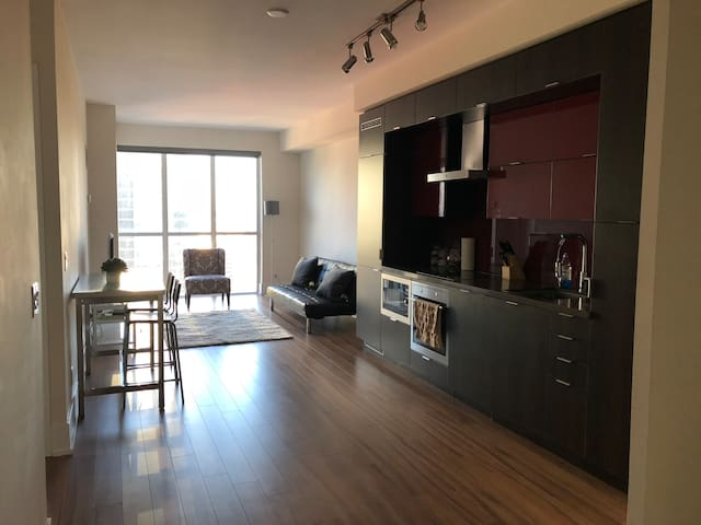 Modern and Luxurious Suite in Downtown Core