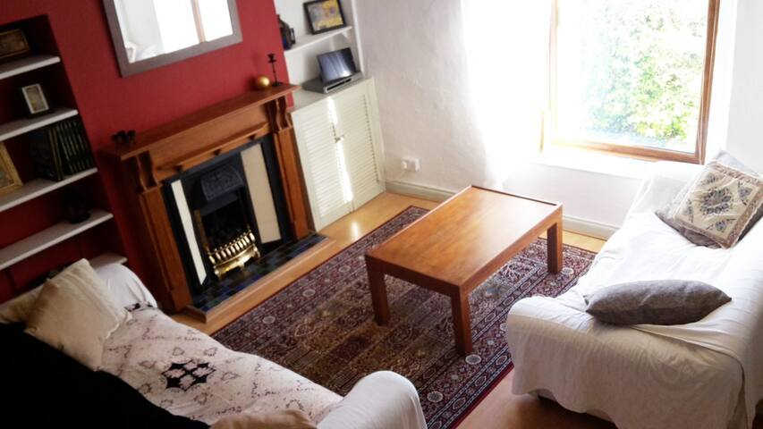 Cute, cosy home in central Swansea - Swansea - House