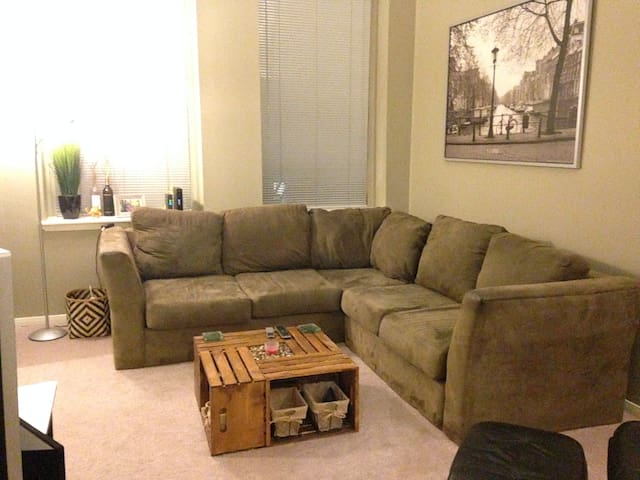 Great Location for the AllStar Game - Cincinnati - Apartamento