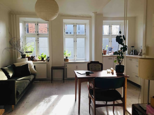 Sunny appartment in bustling Vesterbro
