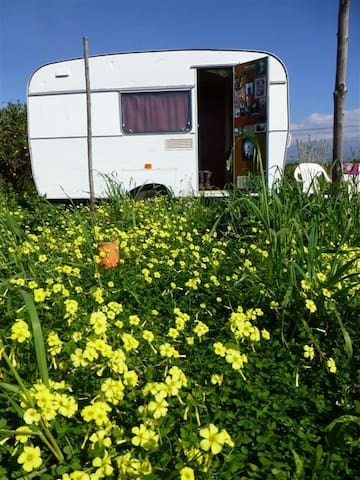 Welcoming caravan in Ecoproject - Paternò - Autocaravana