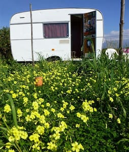Welcoming caravan in Ecoproject - Paternò - Camper/RV