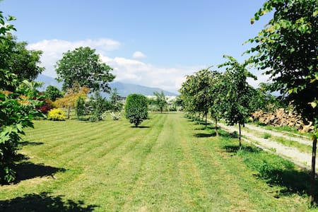 Charming private House with Garden - Ciriè - Villa