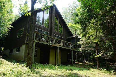 4-Season Adirondack Retreat - North River - Haus