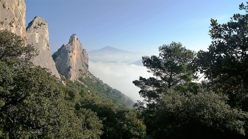 Nos magnifiques Dentelles de Montmirail, face au Mont Ventoux