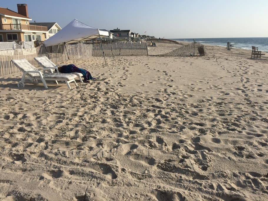 View of upper level of our backyard beach, looking north up the coastline.