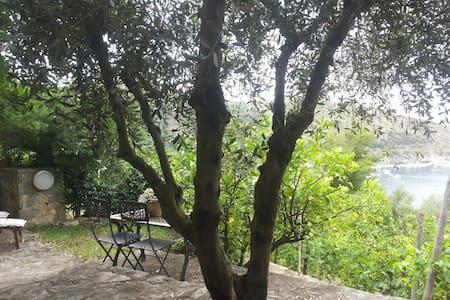 Villa Belvedere - il Cappero - Palinuro - Hus