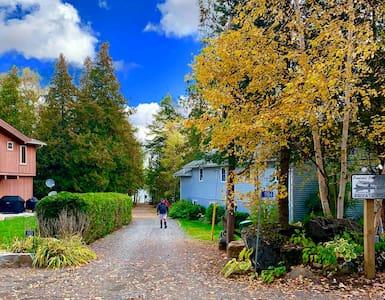 Pennlinkle Point Big Blue Cottage, Paudash Lake
