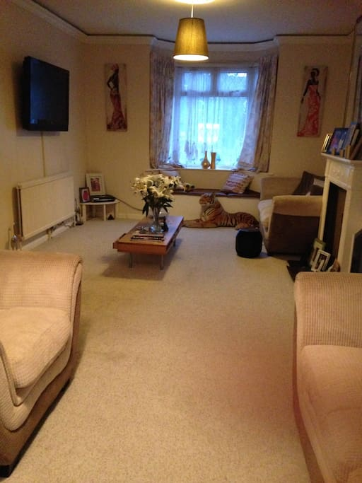 Living room view 1