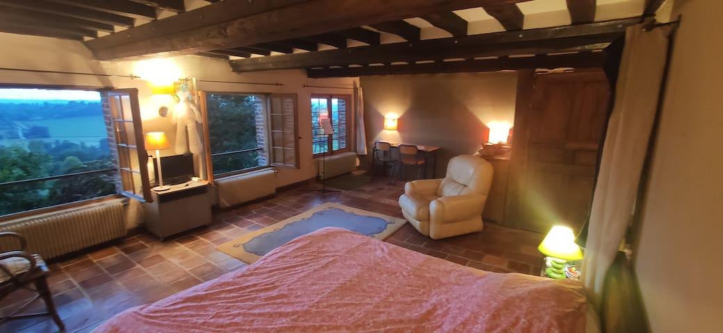 Master bedroom tres spacieuse
