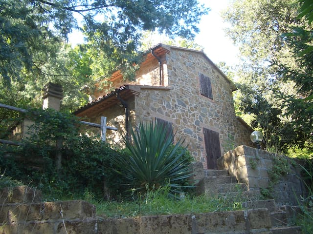 a house in the woods in Tuscany