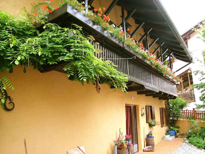 Charming Slovenian Farmhouse Katric