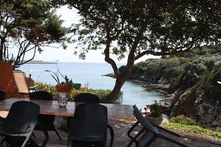 Toscana 32 GRADINI DALL'  ACQUA - Isola del Giglio - Apartamento