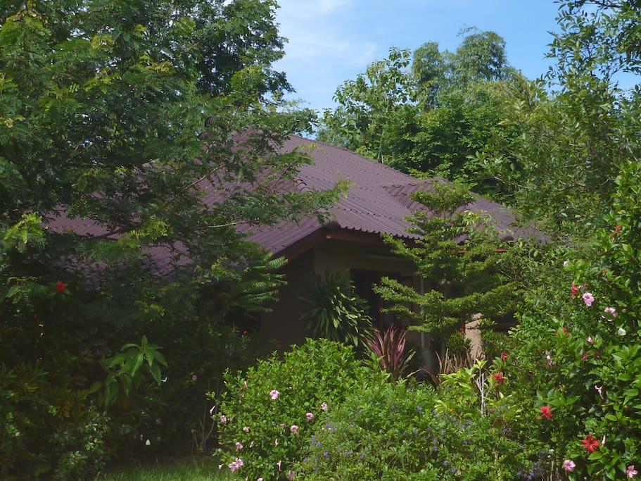 This is the back of the home, surrounded by trees, flowers