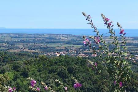 Chambre avec vue panoramique - Castellare-Di-Casinca