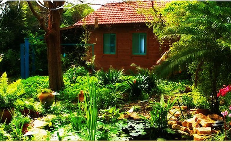 Garden House 1 hour from Tel Aviv - Ein Iron - Xalet