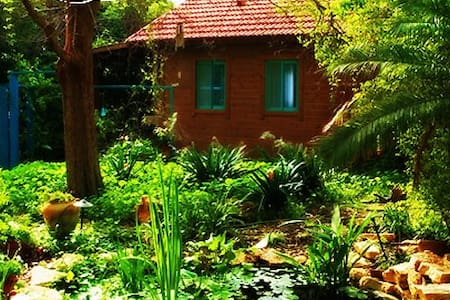 Garden House 1 hour from Tel Aviv - Ein Iron - Dağ Evi