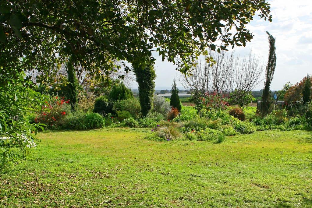 Big Garden for children