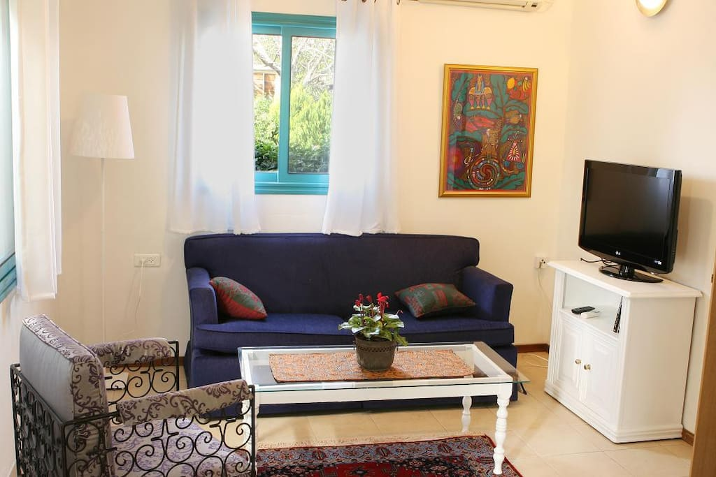 The living room with open sofa bed