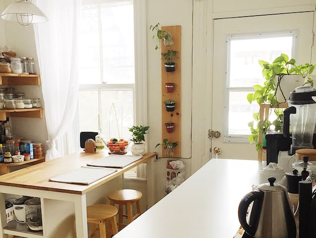 Room in charming appartment in Villeray!