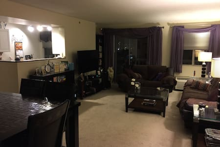 Spare bedroom in apartment - Philadelphia - Apartment