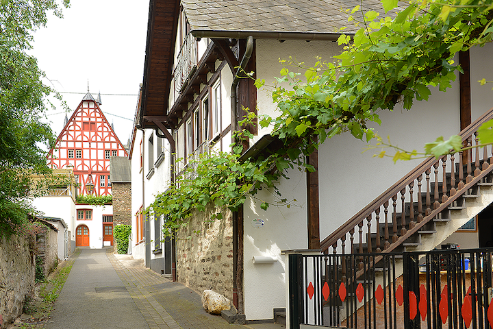 Ferienwohnung Domus Vini - Ellenz-Poltersdorf
