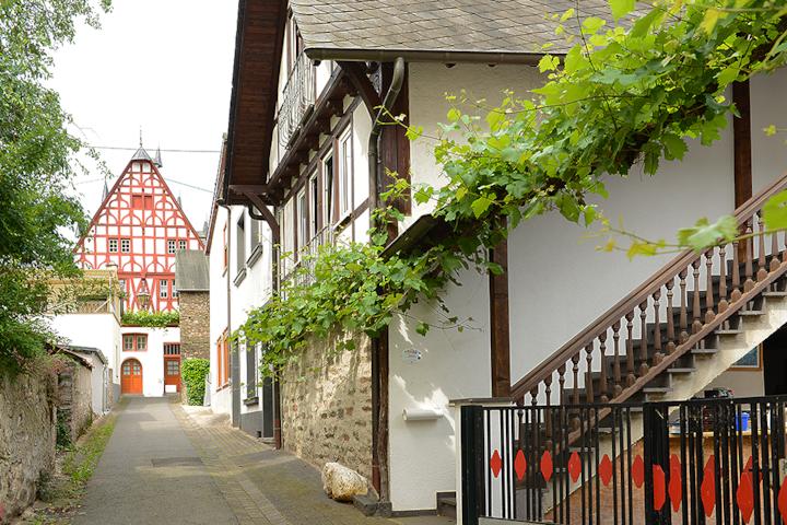 Domus Vini - Ferienhaus