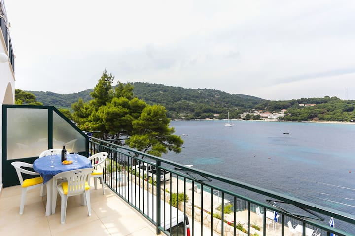 Studio apartment ( 2+1) Mljet - Saplunara