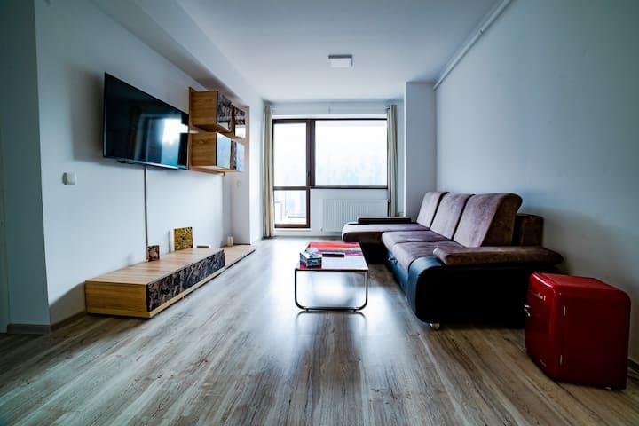 SinaiaMountainView - Panoramic Apartment