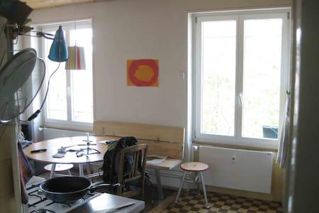 kreativ, lauschig gelebte Wohnung - Basel