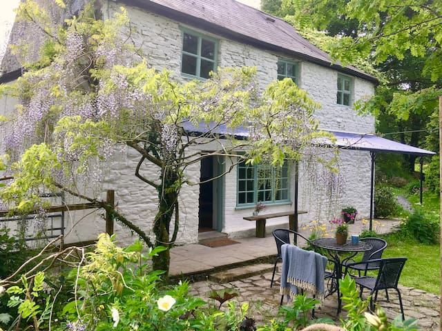 Streamside mill, hot tub, log fire, Brecon Beacons