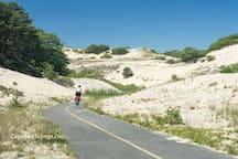 Paved bike paths through the dunes.
